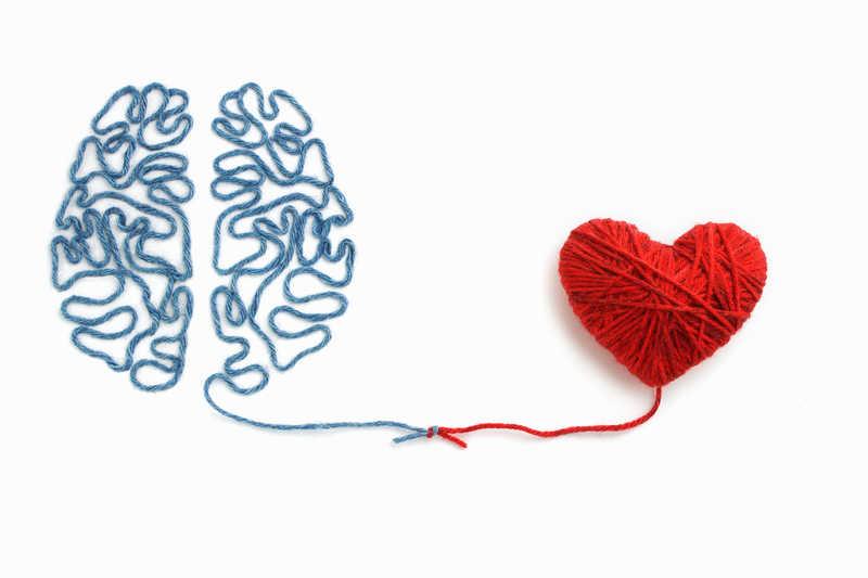 Liefde zit in de hersenen - niet het hart